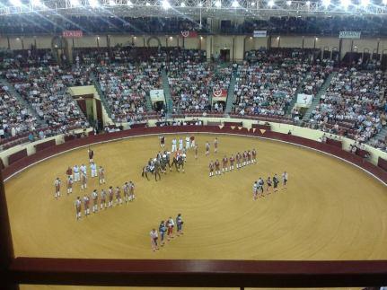 Portuguese bull fighting